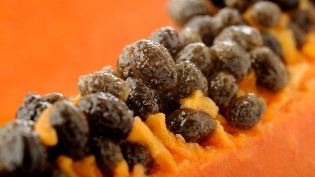 papaya fungal infection treatment