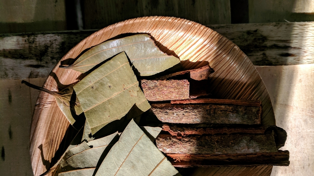 Cinnamon Leaf Oil for nail fungus