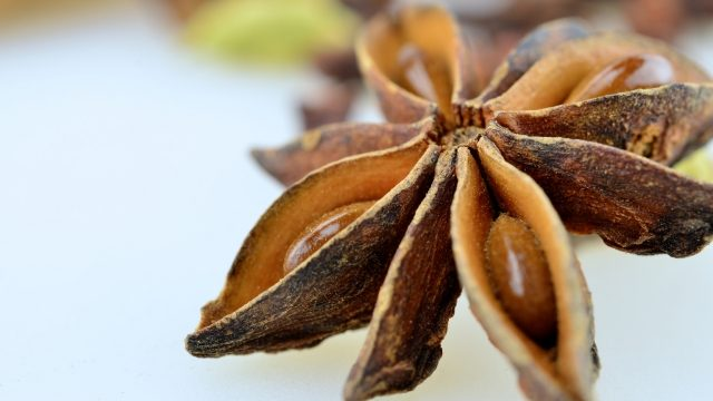 Anise Seeds fungal infection treatment