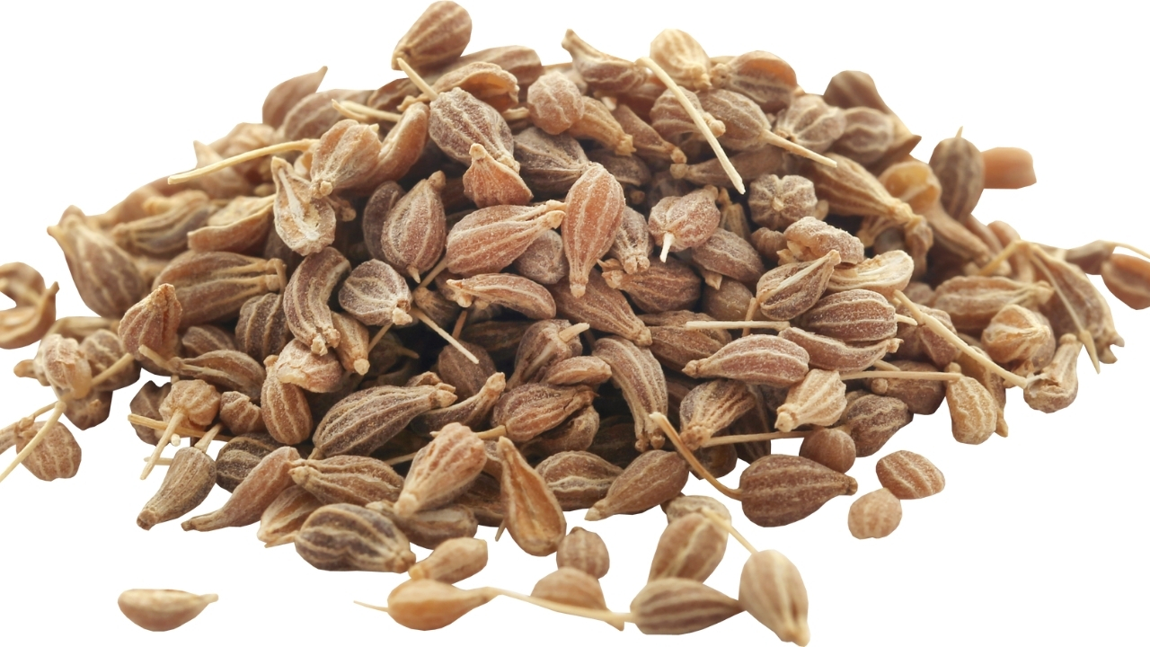 Anise Seeds for fungus infection