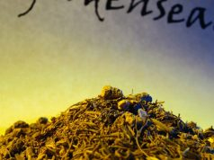 Goldenseal fungal infection treatment