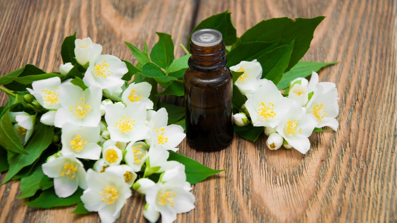 Palmarosa oil for fungal infections