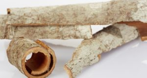 Magnolia Bark for fungal infections