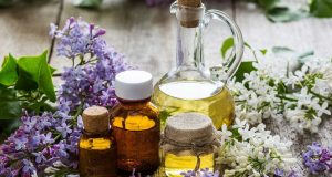Lilac Oil for nail fungus