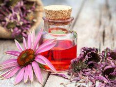 Echinacea for nail fungus